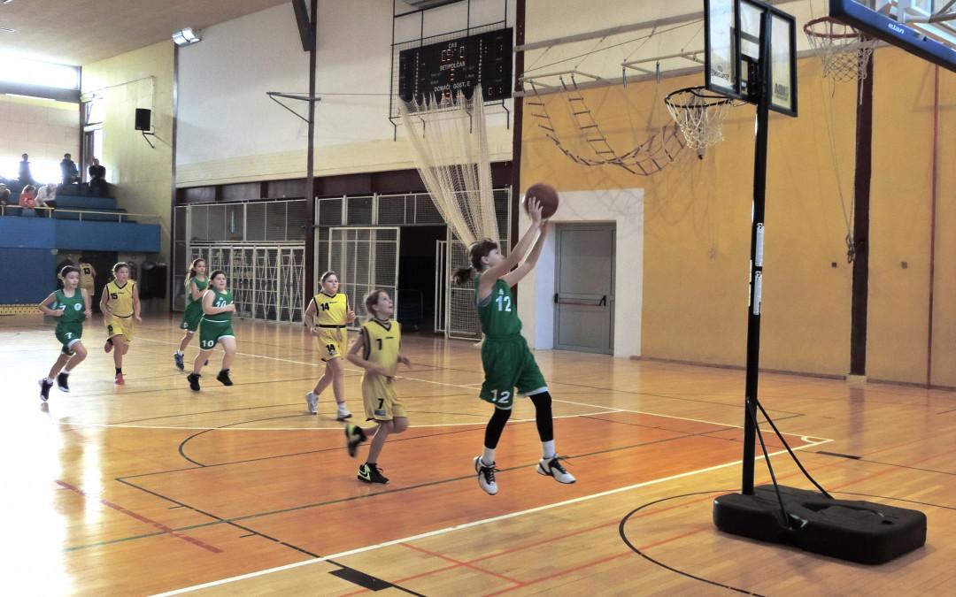 Tanja Valančič podaj žogo